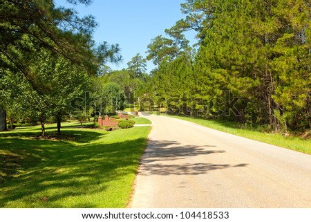 Tree lined country street in rural community