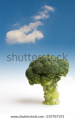 Tree of broccoli. Fantasy Landscape