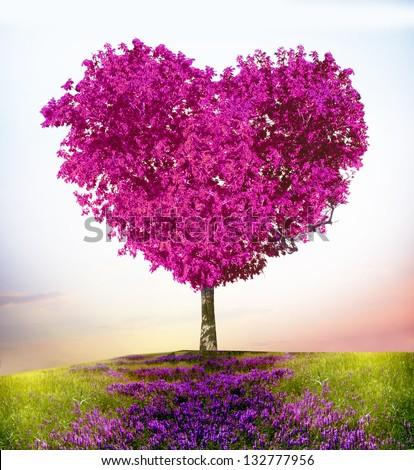 Tree of love - stock photo