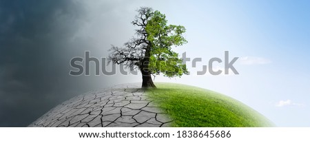 Tree on a globe in climate change Foto stock ©