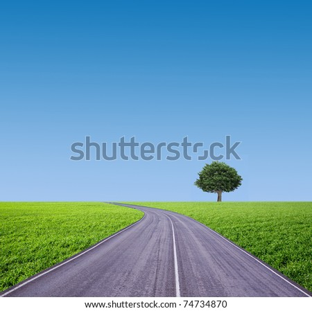tree on a green meadow