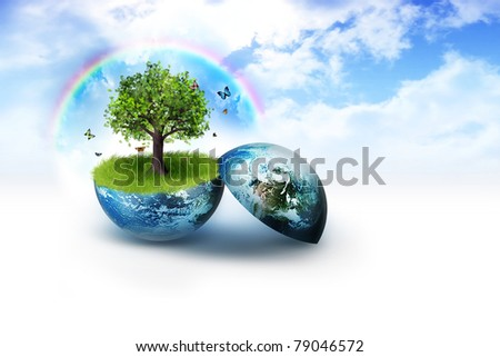 tree on earth against a background of bright clouds