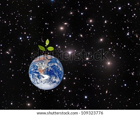 Tree on Earth as a symbol of peace and feeding the world.Elements of this image furnished by NASA - stock photo