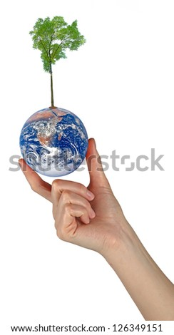 Tree on Earth as a symbol of peace.Elements of this image furnished by NASA