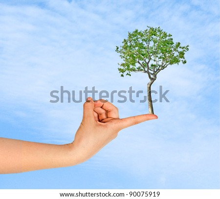 tree on finger as a symbol of nature protection