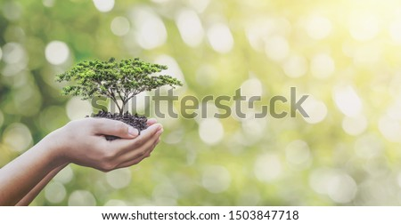Tree planting on volunteer family's hands for eco friendly and corporate social responsibility campaign concept stock photo