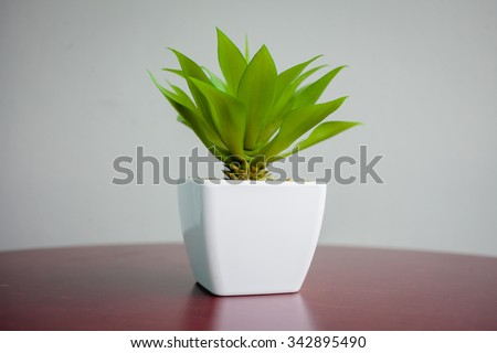 Tree pots decoration on wooden table #342895490