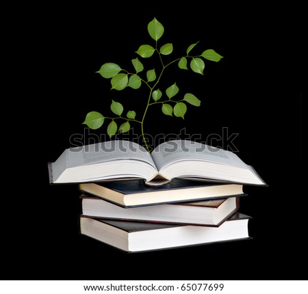 Tree seedling growing from open book