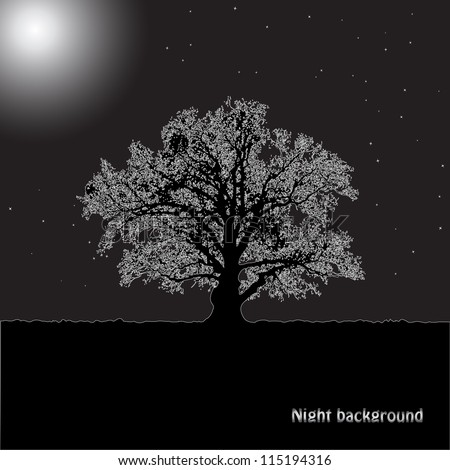 Tree silhouette in a moonlight against the night sky.