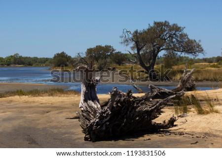 Leschenault peninsula conservation park australind