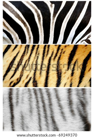 tree style animals skin - stock photo