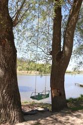 Tree swing. Swing between trees. Lake