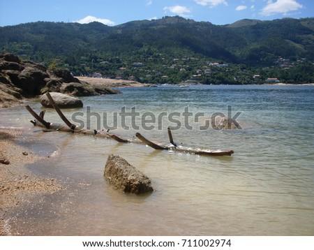 Shutterstock tree trunk floating on the beach on Nacional Park Peneda-Gerês Tronco flutuando na praia no Parque Nacional Peneda-Gerês