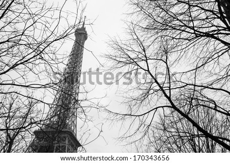 Tree twigs and Eiffel tower at background. Black and white photo.