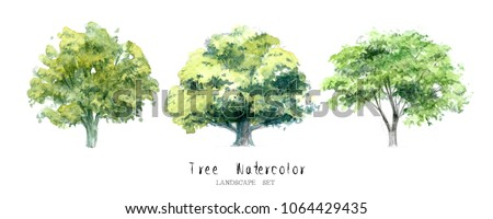 tree watercolor set nature garden painting landscape architecture element isolated on white background ; art hand drawn green trees illustration brush sketch design watercolour .