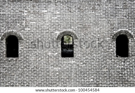 tree windows of a Chinese fortress