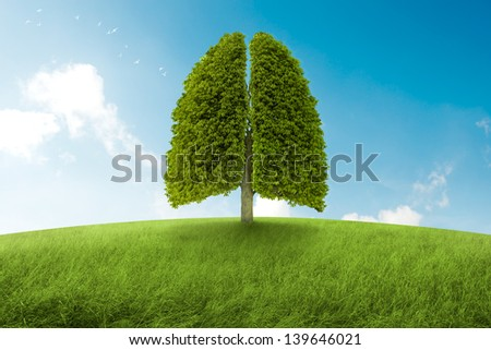 Tree with form of lungs, oxygen for the earth