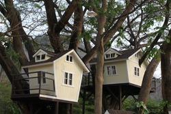 Treehouse for kids in the garden.
