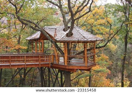 Treehouse Nay Aug Park