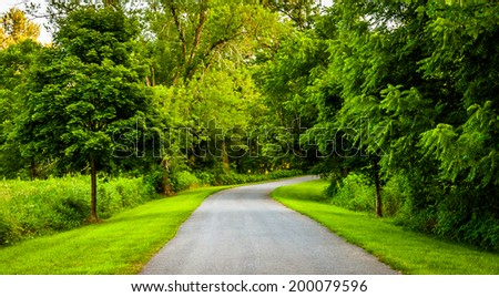 Trees along a road in rural York County, Pennsylvania. - Shutterstock ID 200079596