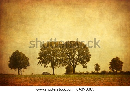 trees along a road with grunge texture - stock photo