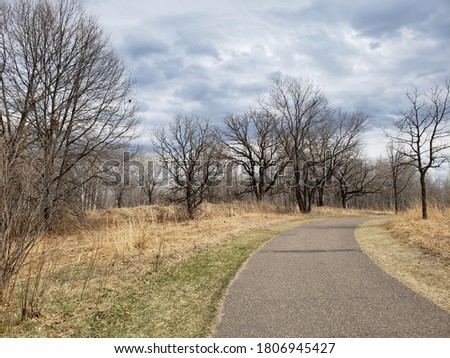 Trees along the Rice Creek Trail at the beginning of Spring Stock photo ©