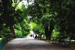Trees and benches in park at Belfast city, Northern Ireland