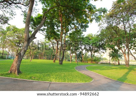 Trees and green grass field in the park