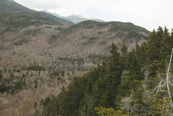 Trees and hill amongst the base of Mount Washington in NH.