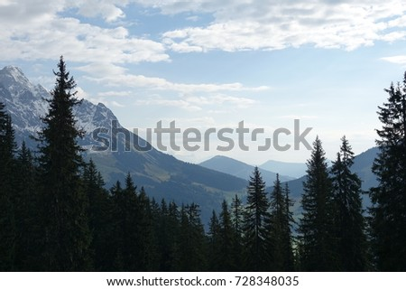 trees and mountains #728348035