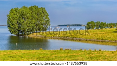 Trees and pasture land on the shores of Rutland Water reservoir in summertime #1487553938