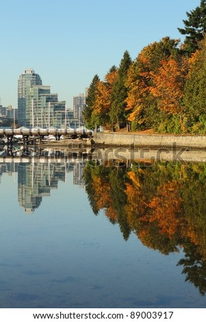 Trees and the pedestrian seawall of Stanley Park reflected in the calm waters of Coal Harbor. Vancouver, British Columbia, Canada.