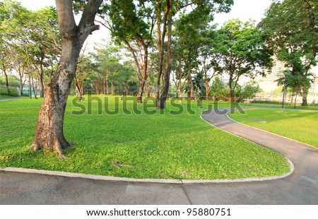 Trees and walkway on green grass field in the park