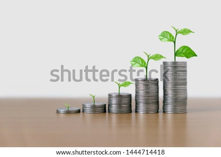 Trees are grow up on coins stack in ascending order and the growth investment with copy space. Concept of finance and investing.  #1444714418