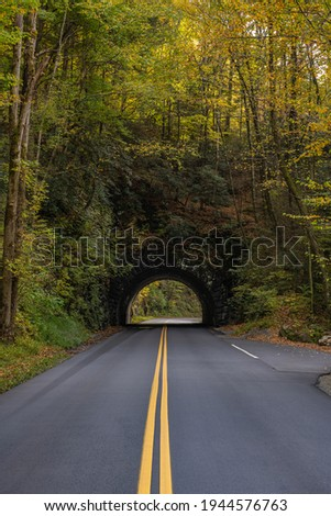 Trees Begin To Change Color Over Tunnel along the Blue Ridge Parkway Stock photo ©