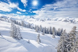 Trees covered by fresh snow in Alps. Stunning winter landscape.