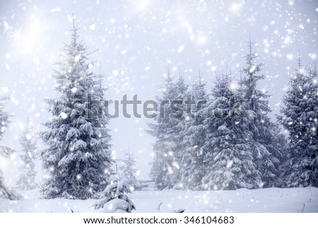 Trees covered with hoarfrost and snow and blue sky in mountains - Christmas background #346104683