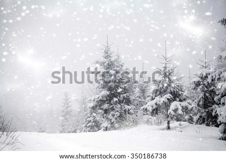 Trees covered with hoarfrost and snow and blue sky in mountains - Christmas background #350186738