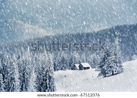 Trees covered with hoarfrost and snow in mountains. Mountain house