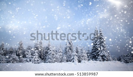 Trees covered with hoarfrost and snow in winter mountains - Christmas snowy background #513859987