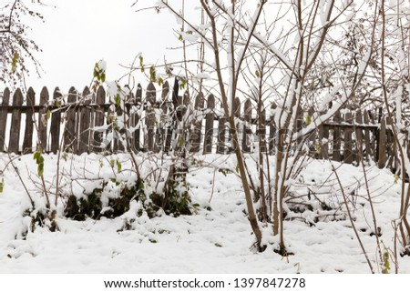 trees covered with snow after a snowfall in the last winter season. Autumn season. Small depth of field. Wooden fence and sky in the background #1397847278