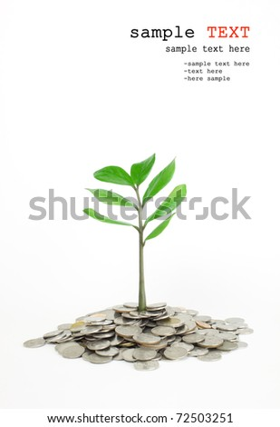 Trees growing in a pile of money.
