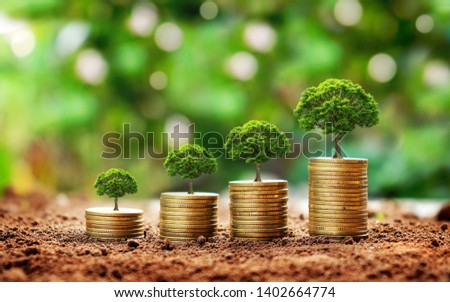 Trees growing on a pile of golden coins on a green background with the concept of investment and financial business. #1402664774
