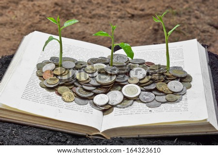 Trees growing on coins over the book / A big open book with coins and tree. \