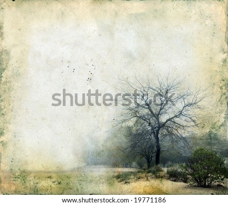 Trees in a foggy landscape on a grunge background. Copy-space for your own text.