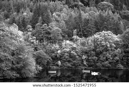 trees in background with boats on water with an infrared filter giving it a vibrant view