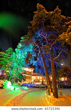 Trees in colourful illuminations at christmas night