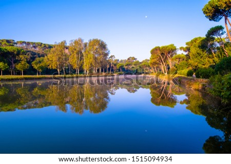 Trees in the Villa Ada park in Rome Italy reflecting on lake's water. Reflected sky has a strong blue azure color while autumn colors start to show on the vegetation #1515094934