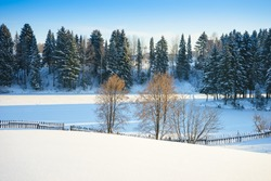 Trees near a frozen pond in the village. Russia, Udmurtia