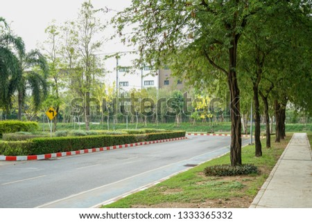 Trees near concrete footpath near the road in Thailand #1333365332
